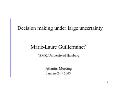 1 Decision making under large uncertainty * Marie-Laure Guillerminet * * ZMK, University of Hamburg Atlantis Meeting January 24 th, 2003.