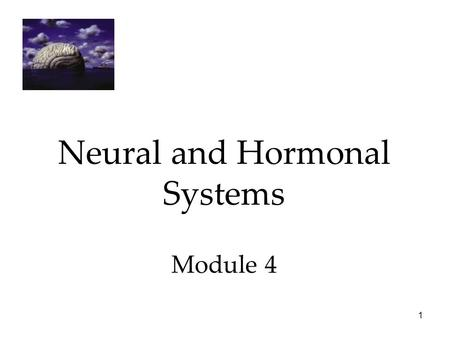 Neural and Hormonal Systems Module 4
