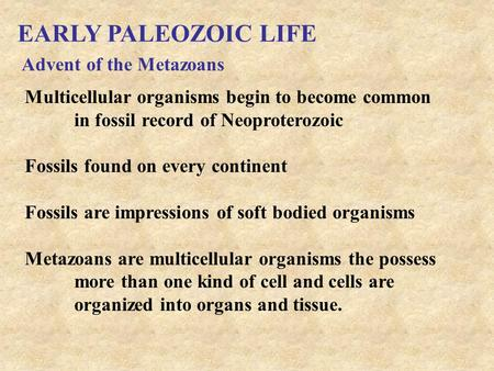 EARLY PALEOZOIC LIFE Advent of the Metazoans