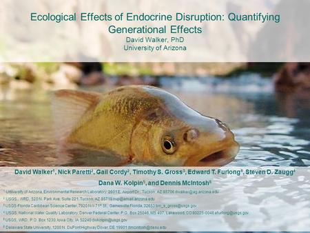 Ecological Effects of Endocrine Disruption: Quantifying Generational Effects David Walker, PhD University of Arizona David Walker 1, Nick Paretti 2, Gail.