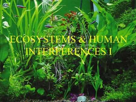 ECOSYSTEMS & HUMAN INTERFERENCES I.  Ecosystem: the biological communities & their abiotic environment  Ecosystems are Characterized by: Energy flow.