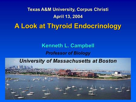 Texas A&M University, Corpus Christi April 13, 2004 A Look at Thyroid Endocrinology Kenneth L. Campbell Professor of Biology University of Massachusetts.