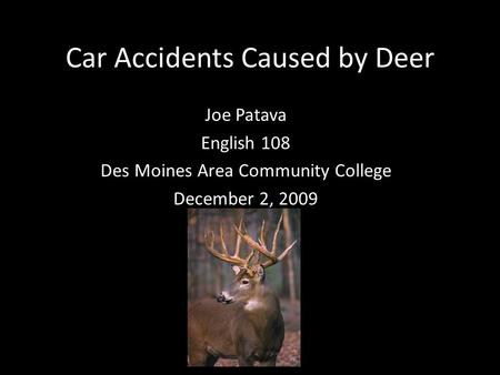 Car Accidents Caused by Deer Joe Patava English 108 Des Moines Area Community College December 2, 2009.