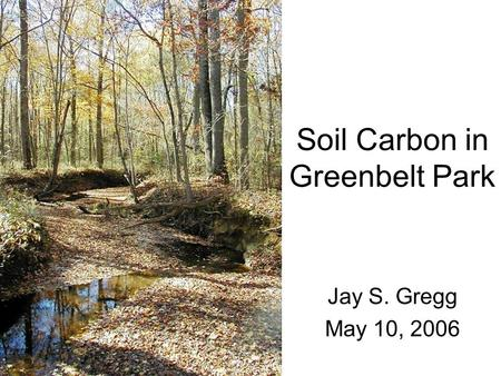 Soil Carbon in Greenbelt Park Jay S. Gregg May 10, 2006.