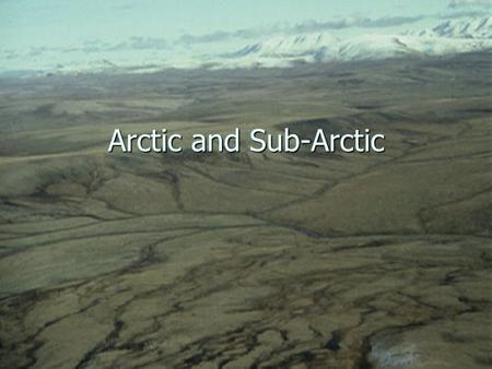 Arctic and Sub-Arctic. Geography Arctic Arctic Northern North America from end of treeline Northern North America from end of treeline Tundra and Permafrost.
