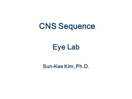 CNS Sequence Eye Lab Sun-Kee Kim, Ph.D.. Eyelids: Netter pl. 76.