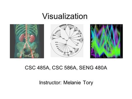Visualization CSC 485A, CSC 586A, SENG 480A Instructor: Melanie Tory.