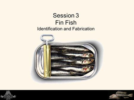 Session 3 Fin Fish Identification and Fabrication.
