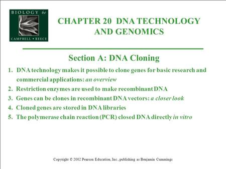 CHAPTER 20 DNA TECHNOLOGY AND GENOMICS Copyright © 2002 Pearson Education, Inc., publishing as Benjamin Cummings Section A: DNA Cloning 1.DNA technology.