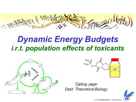 Dynamic Energy Budgets i.r.t. population effects of toxicants Tjalling Jager Dept. Theoretical Biology.