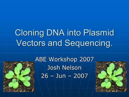 Cloning DNA into Plasmid Vectors and Sequencing. ABE Workshop 2007 Josh Nelson 26 – Jun – 2007.