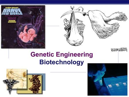 Genetic Engineering Biotechnology We have been manipulating DNA for generations!  Artificial breeding  creating new breeds of animals & new crop plants.