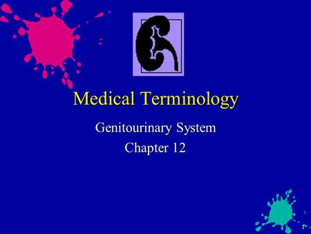 1 Medical Terminology Genitourinary System Chapter 12.