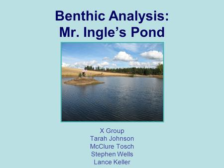 Benthic Analysis: Mr. Ingle's Pond X Group Tarah Johnson McClure Tosch Stephen Wells Lance Keller.