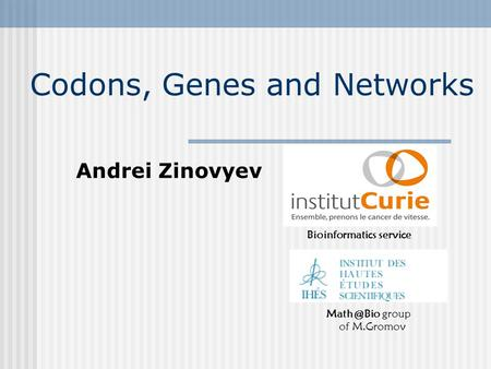 Codons, Genes and Networks Bioinformatics service group of M.Gromov Andrei Zinovyev.