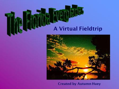 A Virtual Fieldtrip Created by Autumn Huey. Southern Florida West of Miami
