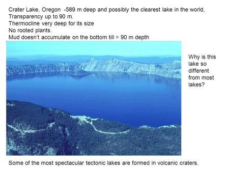 Crater Lake, Oregon -589 m deep and possibly the clearest lake in the world, Transparency up to 90 m. Thermocline very deep for its size No rooted plants.