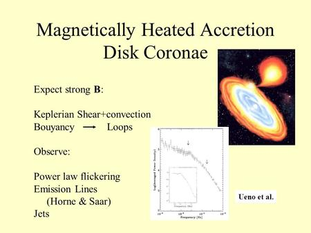 Magnetically Heated Accretion Disk Coronae Expect strong B: Keplerian Shear+convection Bouyancy Loops Observe: Power law flickering Emission Lines (Horne.