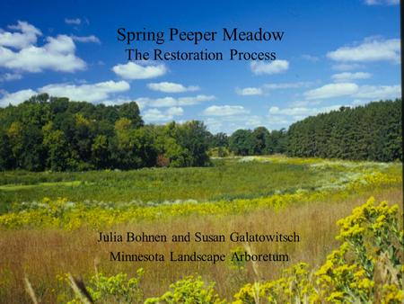 Spring Peeper Meadow The Restoration Process Julia Bohnen and Susan Galatowitsch Minnesota Landscape Arboretum.