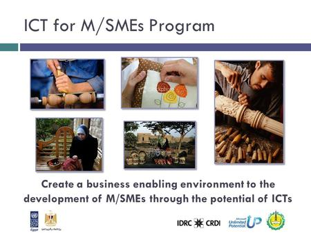 Create a business enabling environment to the development of M/SMEs through the potential of ICTs ICT for M/SMEs Program.
