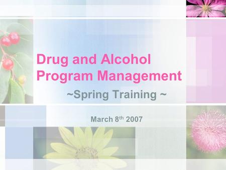 Drug and Alcohol Program Management ~Spring Training ~ March 8 th 2007.