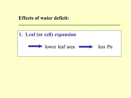 1.Leaf (or cell) expansion lower leaf area less Pn Effects of water deficit: