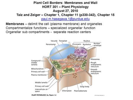 Plant Cell Borders: Membranes and Wall HORT 301 – Plant Physiology August 27, 2010 Taiz and Zeiger – Chapter 1, Chapter 11 (p330-342), Chapter 15