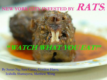 "NEW YORK CITY INFESTED BY RATS : ""WATCH WHAT YOU EAT!"" By Susan Ng, Sara Canas, Gordon Harry, Izabella Shamayeva, Matthew Wong."