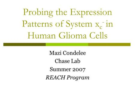 Probing the Expression Patterns of System x c - in Human Glioma Cells Mazi Condelee Chase Lab Summer 2007 REACH Program.