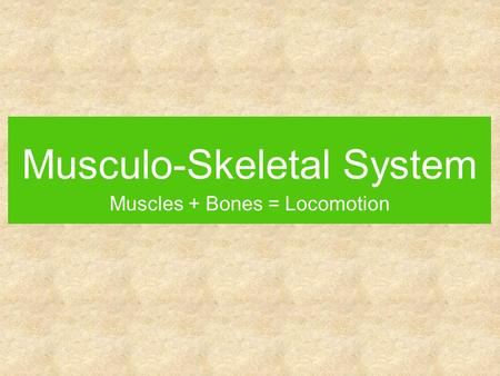 Musculo-Skeletal System Muscles + Bones = Locomotion.