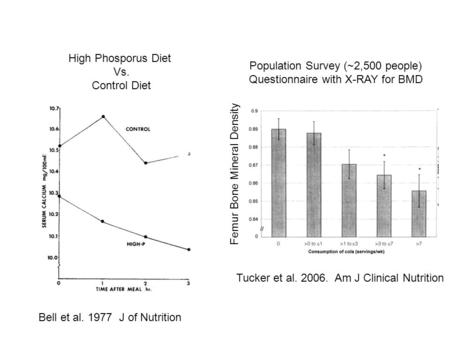 Tucker et al. 2006. Am J Clinical Nutrition Femur Bone Mineral Density Bell et al. 1977 J of Nutrition High Phosporus Diet Vs. Control Diet Population.