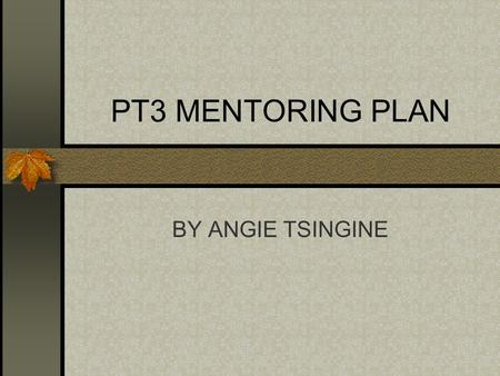 PT3 MENTORING PLAN BY ANGIE TSINGINE PEOPLE Who will I be mentoring? Student teachers and continuing new teachers.