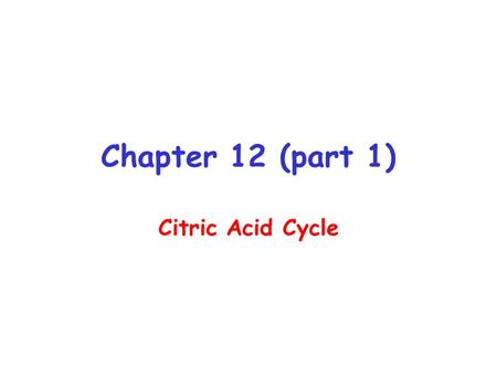 Chapter 12 (part 1) Citric Acid Cycle.