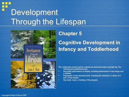 Copyright © Allyn & Bacon 2007 Development Through the Lifespan Chapter 5 Cognitive Development in Infancy and Toddlerhood This multimedia product and.