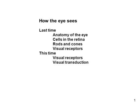 How the eye sees Last time Anatomy of the eye Cells in the retina Rods and cones Visual receptors This time Visual receptors Visual transduction 1.