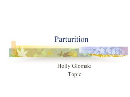 Parturition Holly Glomski Topic. Objective Identify the phases of parturition in sheep Signs of the phases.
