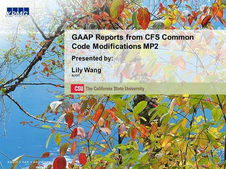 GAAP Reports from CFS Common Code Modifications MP2 Presented by: Lily Wang AUDIT.