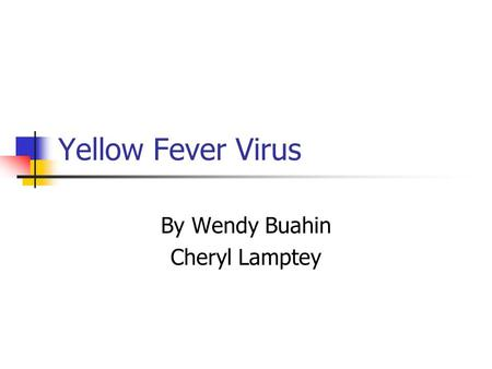 Yellow Fever Virus By Wendy Buahin Cheryl Lamptey.