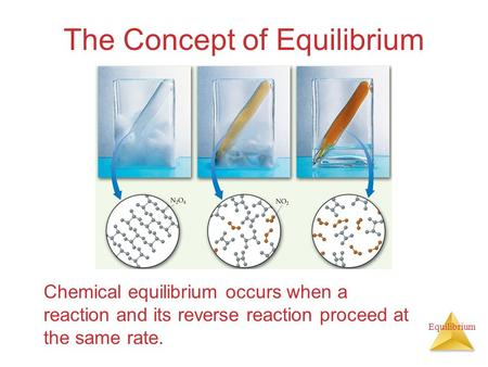 Equilibrium The Concept of Equilibrium Chemical equilibrium occurs when a reaction and its reverse reaction proceed at the same rate.
