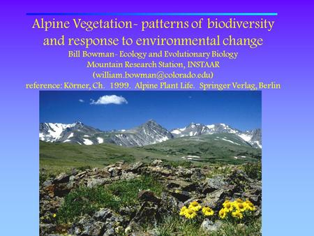 Alpine Vegetation- patterns of biodiversity and response to environmental change Bill Bowman- Ecology and Evolutionary Biology Mountain Research Station,