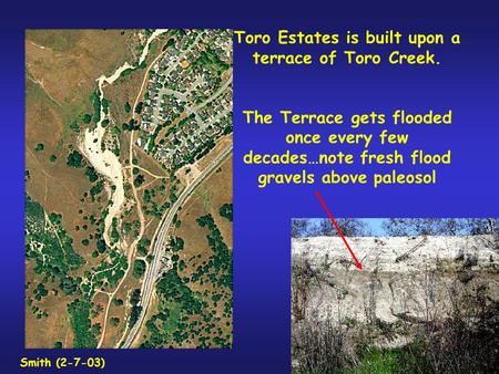 Toro Estates is built upon a terrace of Toro Creek. The Terrace gets flooded once every few decades…note fresh flood gravels above paleosol Smith (2-7-03)