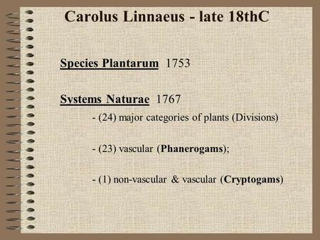 Carolus Linnaeus - late 18thC Species Plantarum 1753 Systems Naturae 1767 - (24) major categories of plants (Divisions) - (23) vascular (Phanerogams);