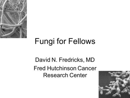 David N. Fredricks, MD Fred Hutchinson Cancer Research Center