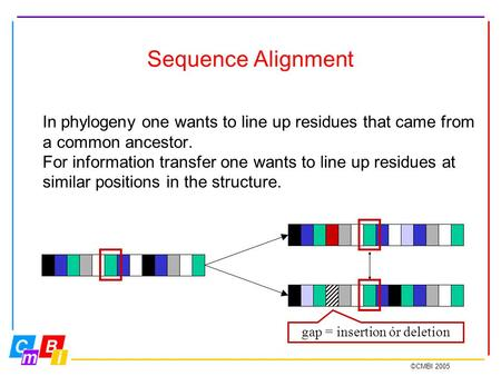 ©CMBI 2005 Sequence Alignment In phylogeny one wants to line up residues that came from a common ancestor. For information transfer one wants to line up.