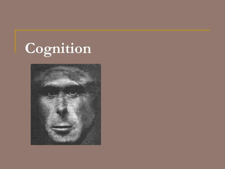 Cognition. Social Learning Mechanisms  Mechanisms  Stimulus or Social Enhancement (instrumental)  Drawn to object by conspecific  could learn via.