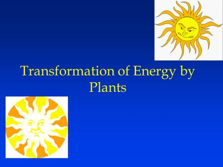 Transformation of Energy by Plants. Efficiency - How well do plants utilize the solar input? Ecological (or Lindeman) efficiency –(GPP/solar radiation)