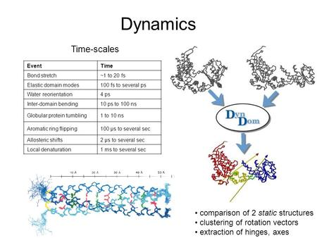 Dynamics EventTime Bond stretch ~1 to 20 fs Elastic domain modes 100 fs to several ps Water reorientation 4 ps Inter-domain bending 10 ps to 100 ns Globular.