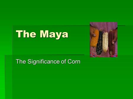 The Maya The Significance of Corn. Mayan Cosmology  Earth and Water important elements because they are the origins of life.  Tlaloc is the guardian.
