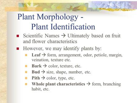 Plant Morphology - Plant Identification Scientific Names  Ultimately based on fruit and flower characteristics However, we may identify plants by: Leaf.