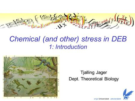Chemical (and other) stress in DEB 1: Introduction Tjalling Jager Dept. Theoretical Biology.